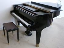 Klavierlehrer/in